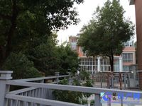 日康花园联排边套 稀有房源 位置好 花园大 随时看房