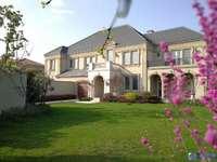 高品质双拼别墅 房东出国急售 时代打造 绿城管理一级物业