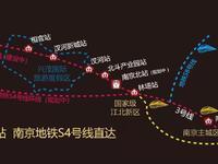 南京地铁口200米 地铁三站房价均价2万5 第二个花桥 和雄安一个等级的新区