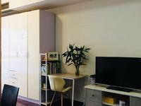 吉田国际公寓,,,公园旁精装一室一厅,1800元含物业费民用水电