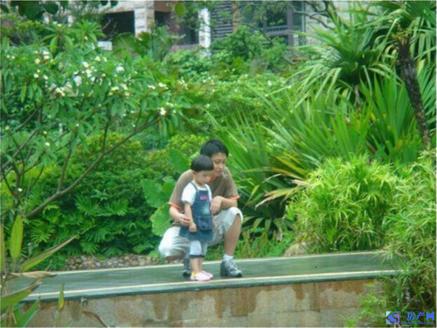 金色港湾 对面宝岛花园 市政府东面 独栋大别墅 花园1亩多 户型好 位置佳