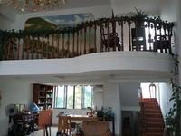 绿洲山语西区 精装别墅