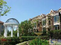 枫丹御园,联排别墅,全新毛胚,北进门南花园,有钥匙,随时看房