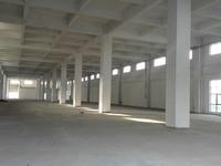 陆家独门独院双层厂房6300平