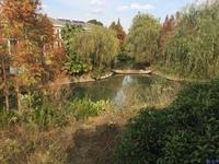 云湖御墅 临水独栋 花园三亩地 .让您的生活空间更惬意