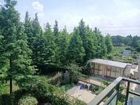 品院 联排别墅 景观优美 视野优秀 真实价位 看房随时 送储藏室38平 自带车位