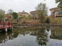 淀湖桃源 临河独栋别墅 花园占地550多平 业主诚心出售