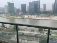 城东稀缺大平层 270度视野极好 俯瞰夏驾河 一梯一户私密性极好