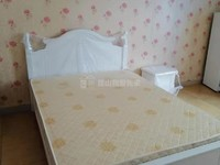 酒店式公寓,一室一厅一卫,房东诚心出租,看房提前联系