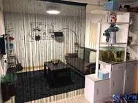 新出复式 龙之天地 通天然气 学 区 未 用 两室使用面积大 婚房装修随时看
