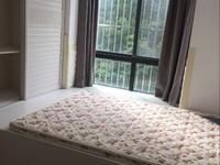 市中心 金鹰商圈 中茵广场 精装标准一室一厅 性价比高 随时可以看房