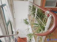 朗晴园 精装复式 可上学 大5房 带阳光房大露台 精装自住保养好