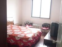 朝阳新村 3室1厅1卫 老式装修 葛江朝阳双学区可用