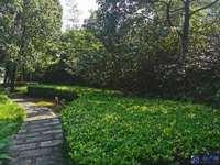 急售!吴江水晶湖畔三千院稀缺在售独栋别墅 临河好位置 户型方正 看房随时