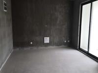 观湖壹号 电梯房 满二 南北通透 看房方便 有钥匙