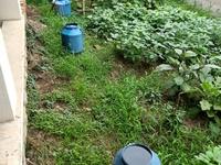 保 真 7.24号 龙城雅居 新出下叠 带80平花园 业主定了独栋 稀缺