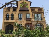 淀山湖畔 希缺双拼别墅 位置好 带150平超大花园 在售性价比 最 高一套