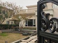 大上海 最新临湖独栋 南进门南花园市面是没有的独家房源
