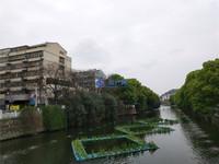 红峰新村 老城区4楼 满2年 玉峰实验小学和二中 学籍好用