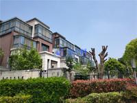 城东核心区域 水世界 美丽的大别墅 豪华装修 地铁口500米