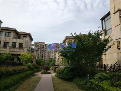 真实在售东晶国际2期联排边套别墅,大花园,全新毛坯,欢迎实地来看房,小区在卖都有