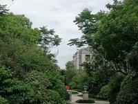 首付25万买市区高档花园洋房送阁楼 双实验学区 成熟配套市中心位置 不限购不限贷