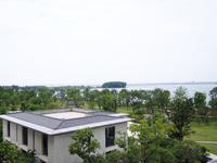 临湖豪宅别墅,诚心出售,稀缺别墅,环境优美