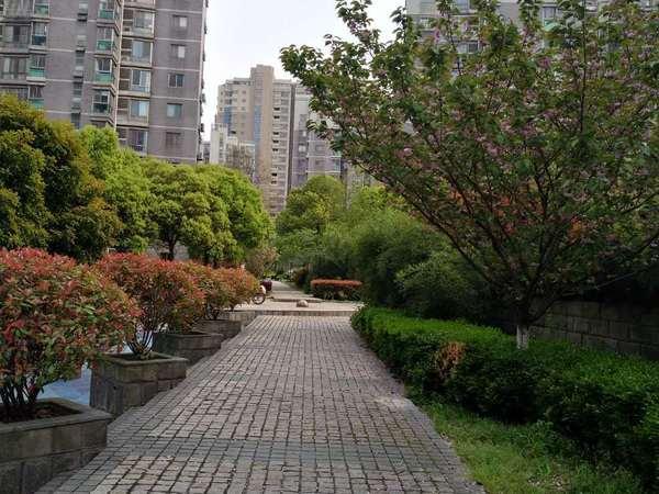 城西高档公寓香榭水岸精装修1室一厅2500/月 随时入住 看房方便
