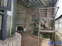 巴比伦花园精装大三房 带书房 装修清爽整洁 适合居住