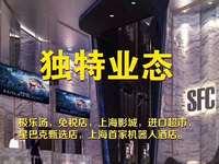 上海目前唯一一个第五代综合体 地铁上盖项目百万方商业体