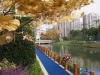 首创禧悦棠礼花园一手房,多种户型,平均一万五六一平,无中介费