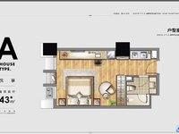 巴比伦精装公寓 全新一手房 精装交付 首付仅需35W即可得房 低投资高回报