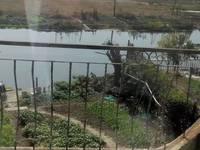 锦绣蓝湾双拼。南面临河 花园200平米 全景看房 房东随时配合签约
