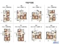 合生国际 新房 房东包税费 多套在售 户型如下 随时看房
