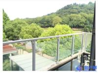 峰水佳苑对面绿洲山语 沿河景观景观 独栋大别墅 户型好 位置佳 大花园