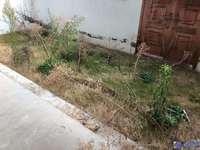 最新苏园叠加别墅1—2带花园,客厅挑高7米,小区出售房源15套看房随时
