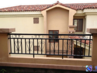中大易墅 南临河独栋别墅 占地1.5亩 挑高客厅 满两年