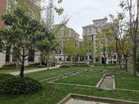 现房40年产权可住人可注册公司办公,总高6层的欧式洋房,交通便利,办公居住环境好