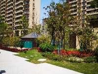 江南境秀一楼大花园 城西高档小区 3 2 2房型