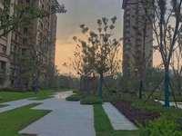 江南境秀城西高档小区 小区环境优美 是你置家的首选