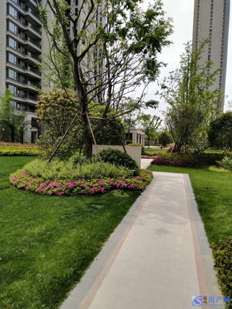 双娄江学位房,户型超好,景观楼层。