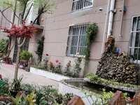 常熟联排别墅 面积超大 210平米 可当商铺 可自住 开发商回笼资金 急售