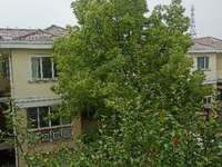 ,真实挂牌价,银泰花园毛坯独栋别墅,价格低,急售485万