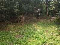 银泰花园独栋别墅288平,全新毛坯 花园面积大约500平左右