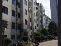 震川中学陪读 房东自住房出租 80平