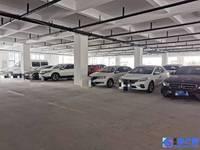 招租 城东 金阳路 11680平米 1一5层 丙类标准厂房 可分租