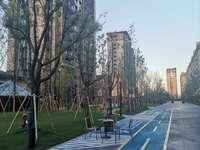 巴城湖滨路学院路口,靠近托普学院和浦东软件园,公交118和159路距小区100米