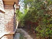 城西紫怡花园,毛坯联排别墅247平,880万