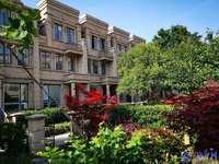 首付70万买别墅,太仓市港区230万起的别墅,没有社保可以买,联排双拼都有在售
