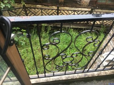 近地铁 致源晴碧园伪独栋 有钥匙随时看房